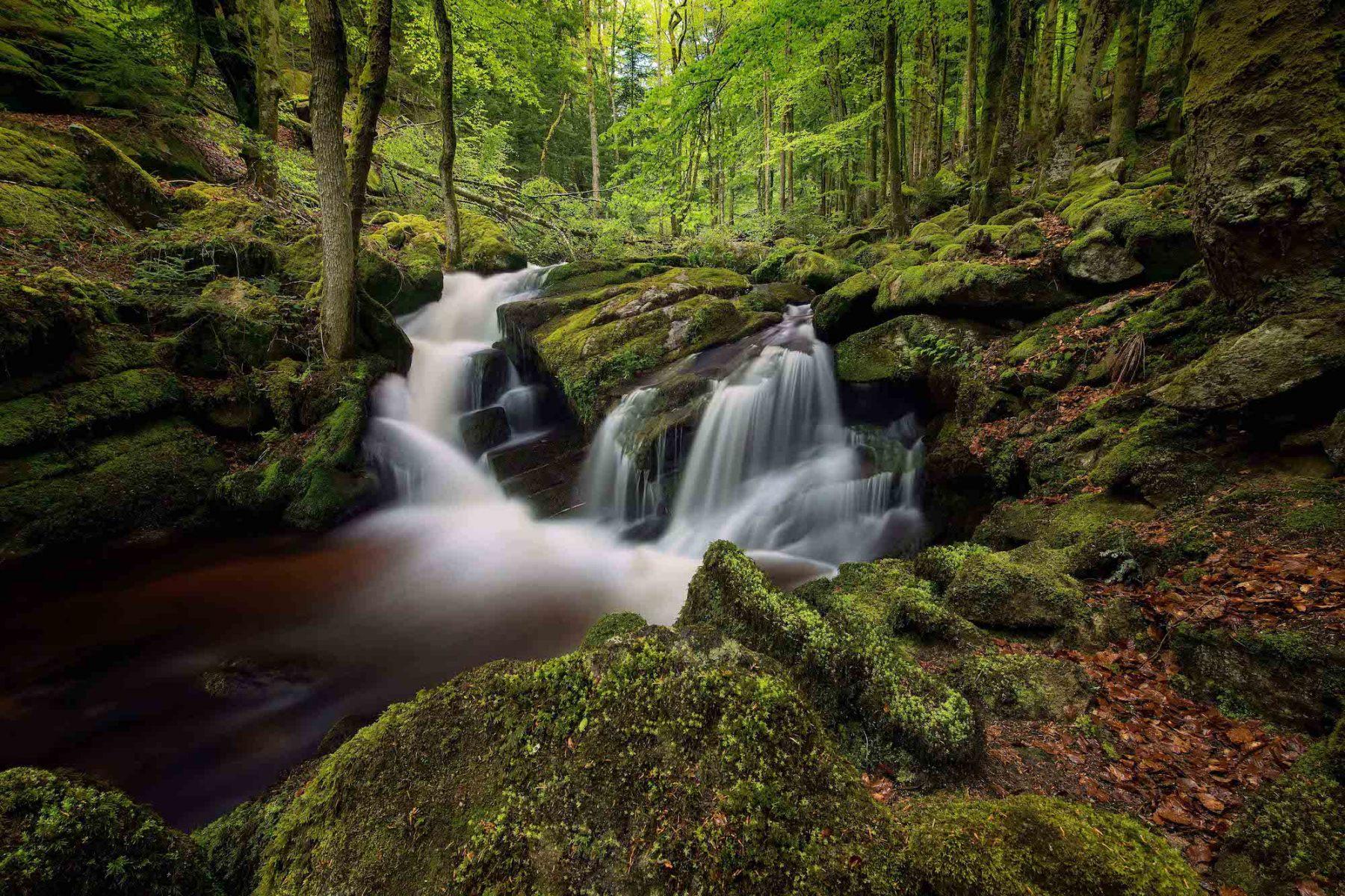 Vallée des Darots - Auvergne - Bougnat Photos