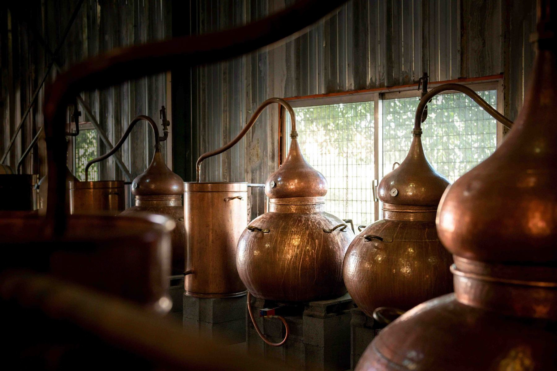Home Distillers- Bougnat Photos